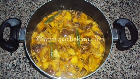 Step 2 Brinjal Coconut Milk Curry Recipe